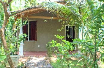 Fußboden Günstig Urlaub ~ Im cabana einen günstigen sri lanka urlaub verbringen